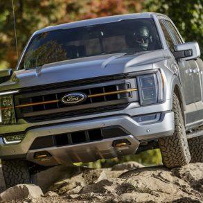 Lobo Tremor de Ford