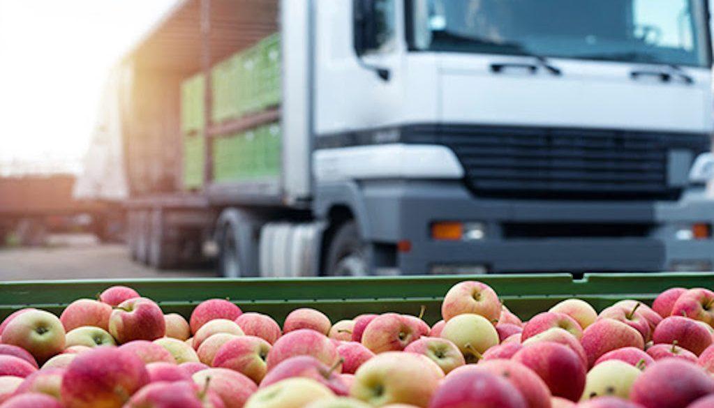 La importancia de la cadena de frío en el transporte de alimentos