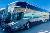 MAN entrega a IAMSA 83 autobuses Marcopolo G7 Plus